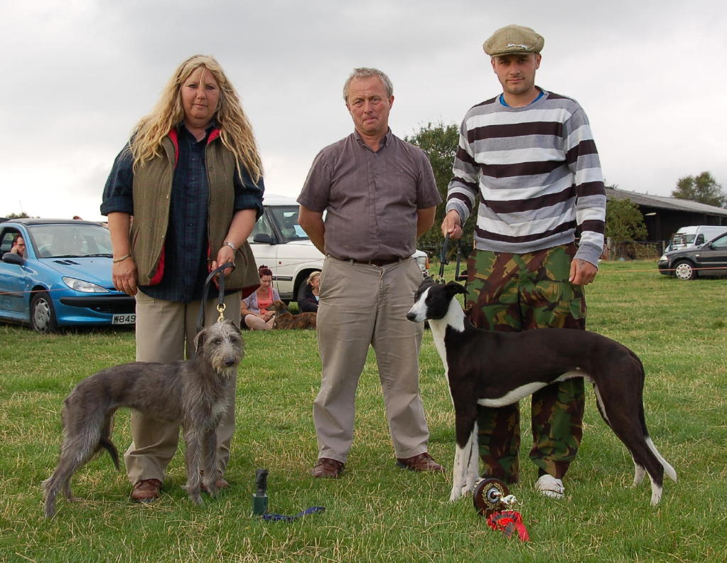 lurcher-reserve-and-champ-pup