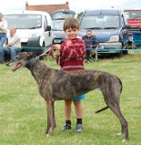 2013 Lurcher Child Handler
