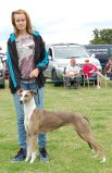 2013 Lurcher Child Handler2